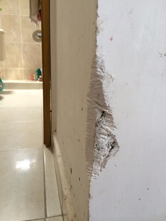 Morenito comiéndose la pared del baño